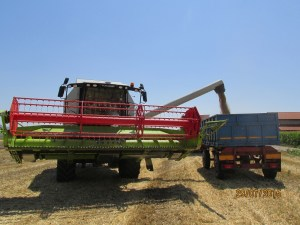 demo combine claas 2015 (12)