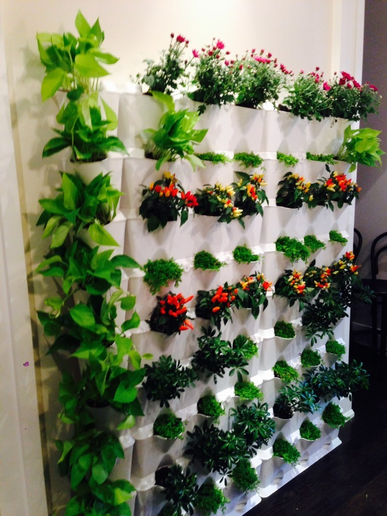Picture Sale Vertical Garden Wall Ideas Minigarden Vertical Wall Vertical Gardening Brings Your Walls To Life Minigarden Us Vertical Garden Wall garden Vertical Gardens Walls