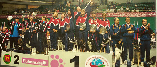 2001 Large Dog Team Gold