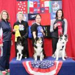 Round 3 - Large Dog Overall Winners 1st place Rosanne DeMascio and BC, Strafe 2nd place Lisa Ross and BC, Cool! 3rd place Desiree Snelleman and BC, Pace