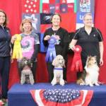 Round 4 JWW - Small Dog Winners 1st place Cassie Schmidt and Mini Poodle, Bliss 2nd place Kim Line-Berget and Sheltie, Racket 3rd place Terry Herman and Poodle, Idgie