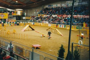 1996 Arena