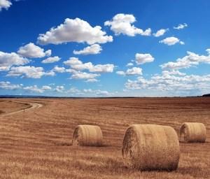 空と小麦粉