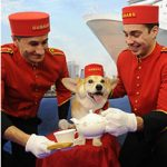 Cunard Cruises Has Gone to the Dogs