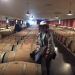 Bordeaux Wine Cruise Snapshot