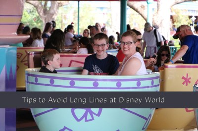 Twelve Tips to Avoid Waiting in Line at Disney World | WanderWisdom