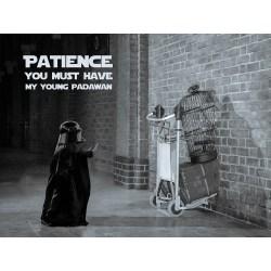 Small Crop Of Patience Young Padawan