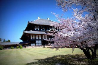 Le temple Todai-ji qui abrite l'un des plus grands bouddhas en bronze du monde (Nara)