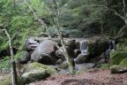 Sur l'île de Miyajima