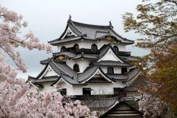 Le château d'Hikone