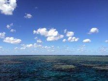 La fameuse grande barrière de corail...