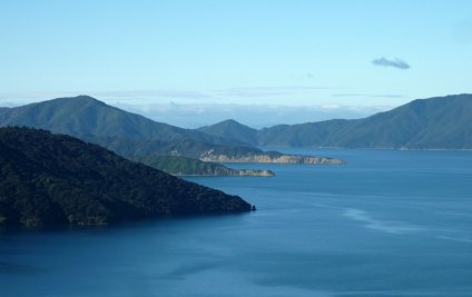 Le nord de l'île du sud: les Marlbourough Sounds