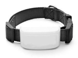 pet_collar
