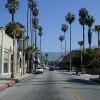PasadenaPalmTrees.jpg