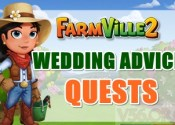 Farmville 2 Wedding Advice