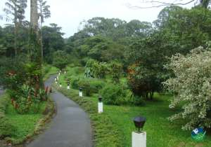 Arenal Observatory Lodge Garden