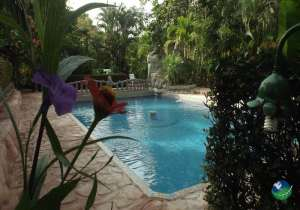 Ara Ambigua Lodge Pool
