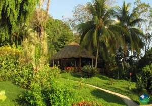 Costa Paraiso Dominical Exterior