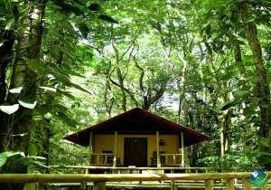 Evergreen Lodge Costa Rica Bungalow
