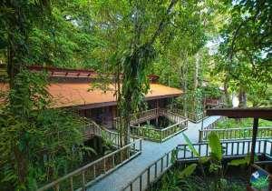 Evergreen Lodge Costa Rica Exterior