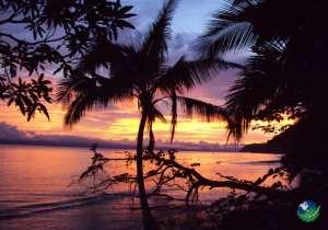 Golfo Dulce Lodge Sunset
