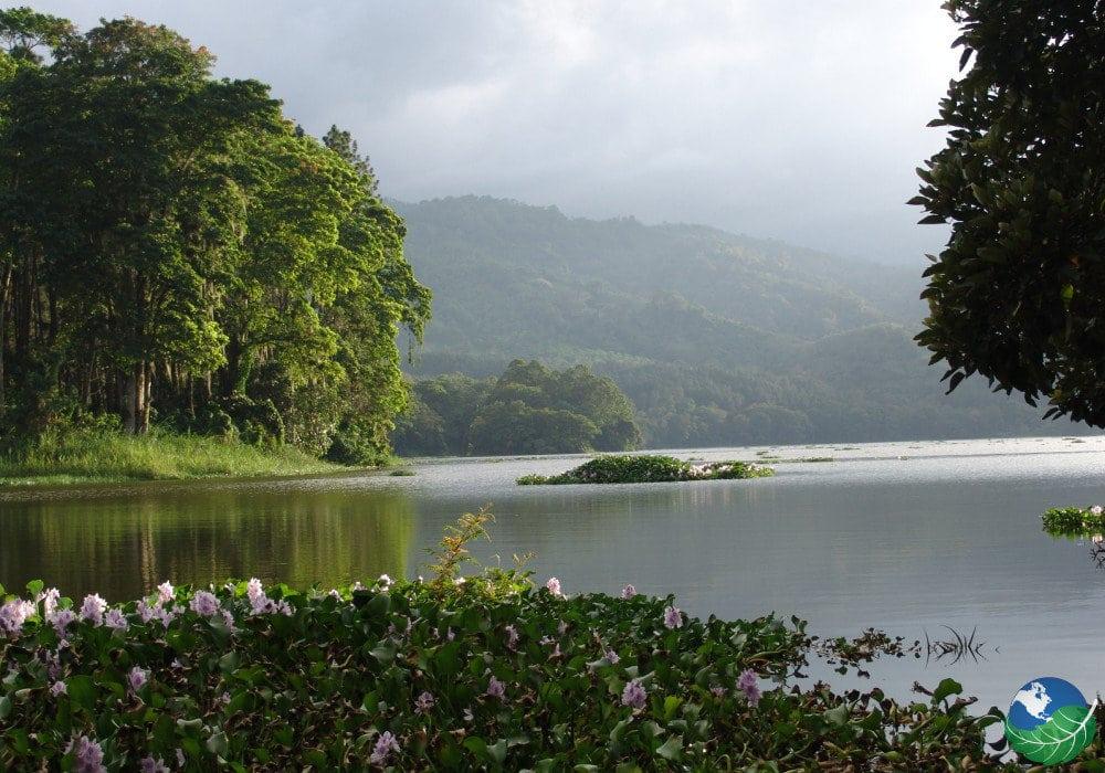 Orosi Lake