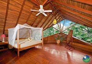 Tree House Lodge Costa Rica Beach Suite Room