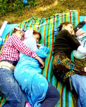 мартышки спят
