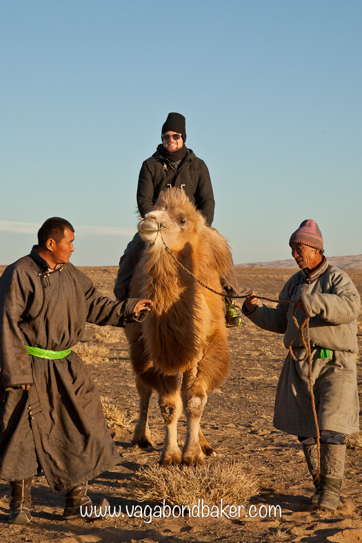 No road signs in the Gobi Desert. Part 2