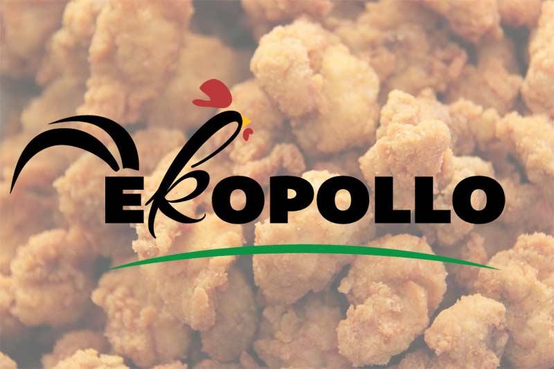 Ekopollo