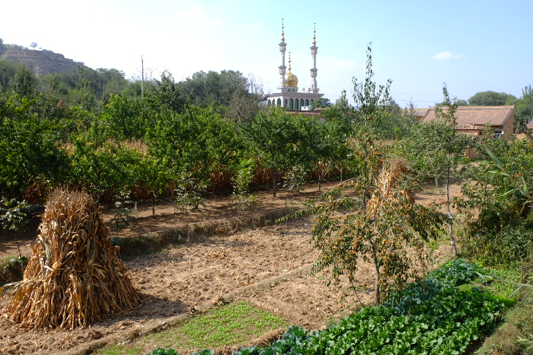 Één van de 100 moskeeën in Linxia
