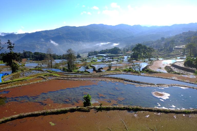 Rijstterrassen bij Yuanyang