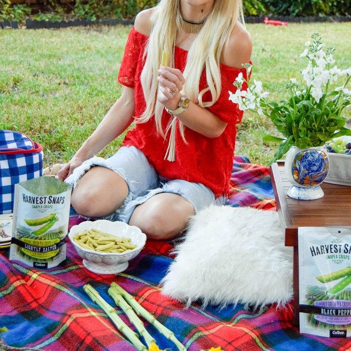 vandi-fair-dallas-fashion-blog-lauren-vandiver-southern-texas-lifestyle-fitness-blogger-healthy-snacking-snacks-harvest-snaps-snap-pea-crisps-picnic-12