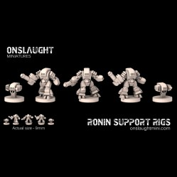 Ronin Support Rigs