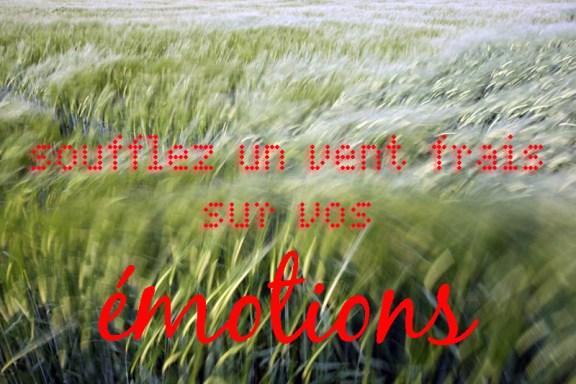 Soufflez un vent frais sur vos émotions