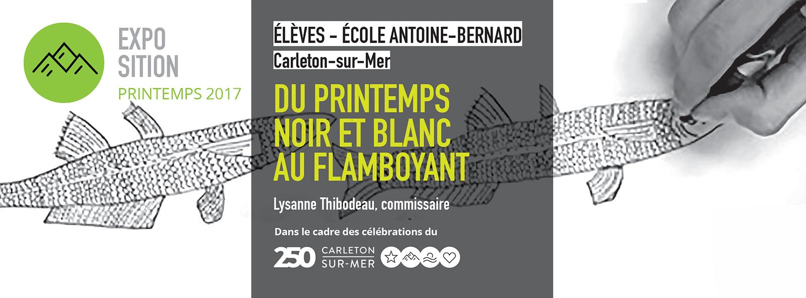 Élèves de l'école Antoine-Bernard, Carleton-sur-Mer DU PRINTEMPS NOIR ET BLANC AU FLAMBOYANT – Installation