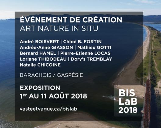 BARACHOIS IN SITU | LA BIENNALE | BISLaB | PERCÉ / Gaspésie | Centre d'artistes Vaste et Vague