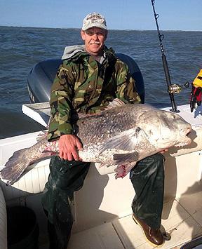 Virginia beach fishing report virginia beach fishing for Va beach fishing report