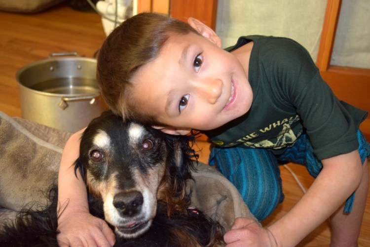 5 Tools to Help your Child Cope When a Pet Dies