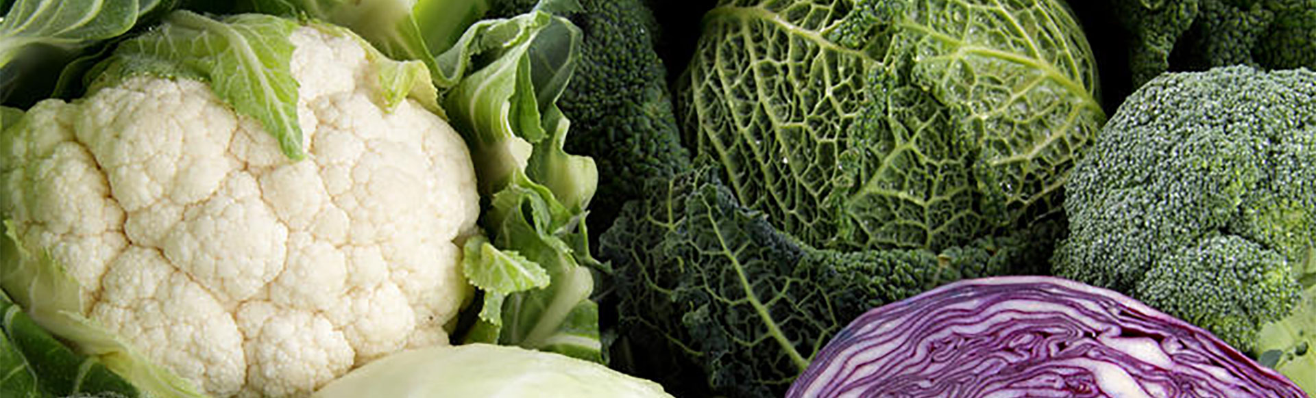 vegetables-header