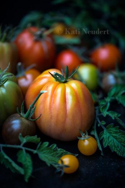 Verschiedene Tomaten.