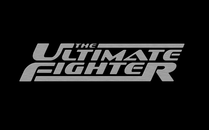 the_ultimate_fighter
