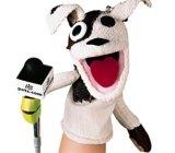 pets-com-sock-puppet