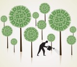 money-tree-growing-startup