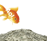 Aol-logo-cash-money