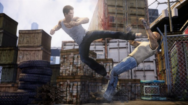 Sleeping Dogs 4