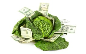 Kabbage funding