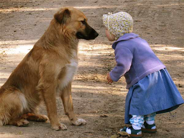 baby-girl-playing-with-dog