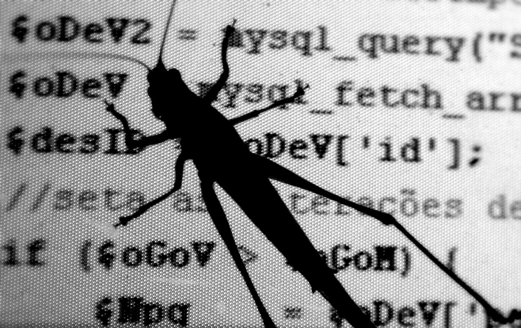 software code bugs