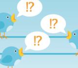 tweet birds twitter